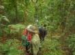 Khu Bảo tồn thiên nhiên Ea Sô