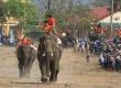 Come to Buon Don Elephant Racing 2019