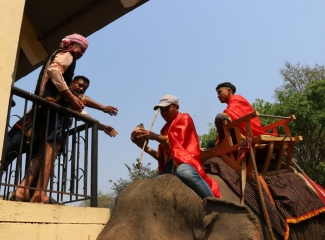 Visitors enjoy exciting M'Nong elephant worship in Dak Lak