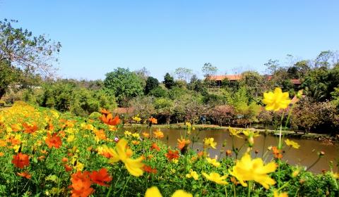 Khu Du lịch sinh thái Văn hóa Cộng đồng Ko Tam: Sẵn sàng đón khách du xuân Canh Tý năm 2020