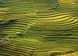 CNBC names Mu Cang Chai among top travel destinations of 2020