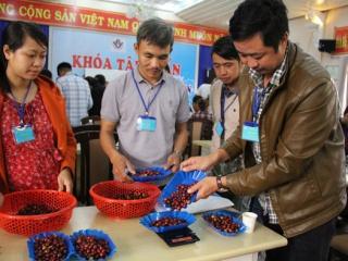 Nhiều nét mới trong Cuộc thi Cà phê đặc sản Việt Nam 2020
