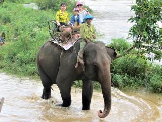 Đắk Lắk không đưa khách đến tham quan các điểm nuôi nhốt động vật hoang dã trái phép