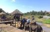 Đắk Lắk bỏ du lịch cưỡi voi: Động thái tích cực